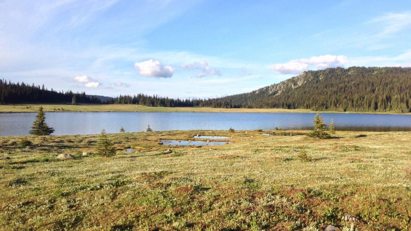 Fight Lake